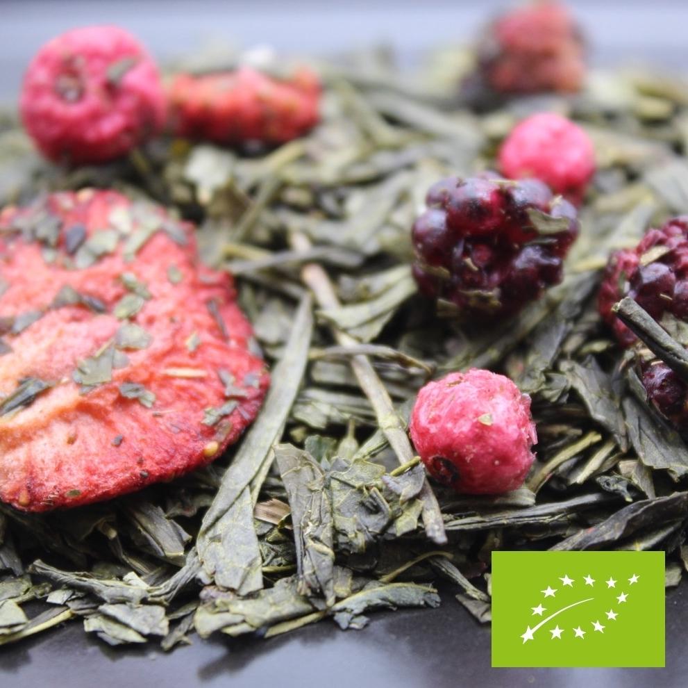 thé vert baies des bois BIO