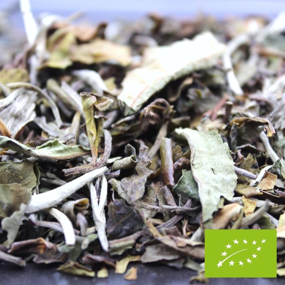 Référence à la noblesse du thé, ce thé blanc porte le nom d'une des plus belles fleurs de Chine : la pivoine blanche (de sa traduction Pai Mu Tan). Lors de l'infusion, les feuilles entières de ce thé se déploient et offrent une saveur délicate… Une infusion abricotée avec des notes végétales.
