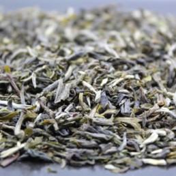 thé vert de chine Mao Feng de la fbkt